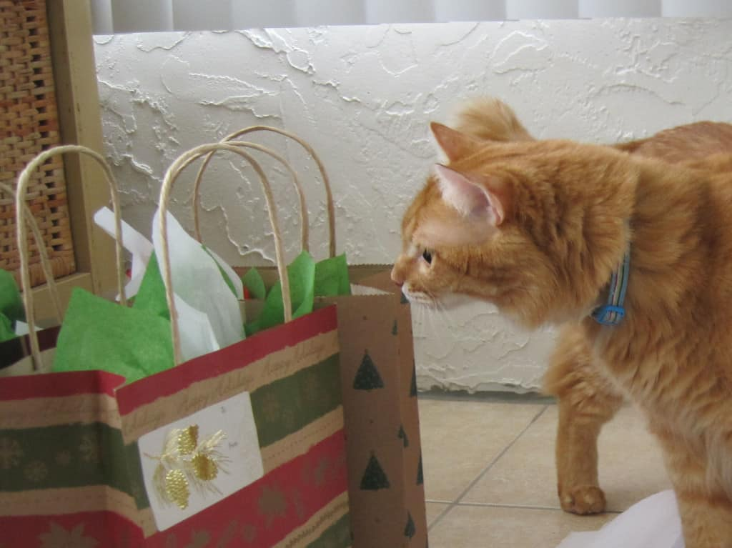 Newton and Christmas Gift Bags