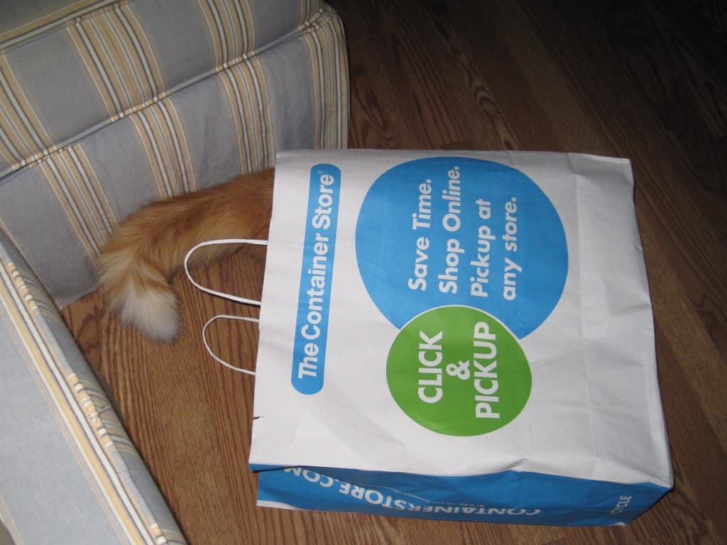 Newton and Shopping Bag
