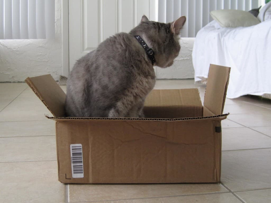 Pierre in box outtake 02