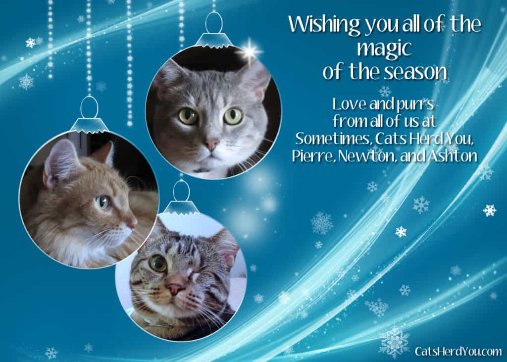 Sometimes Cats Herd You Holiday Card 2013