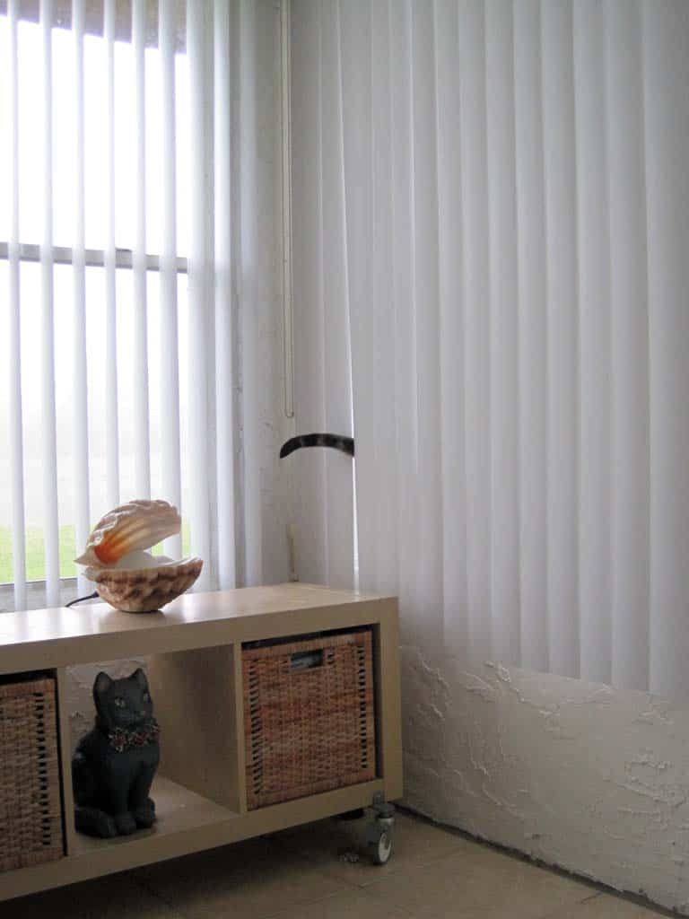 Ash_tail_peeks_out_of_blinds_sm