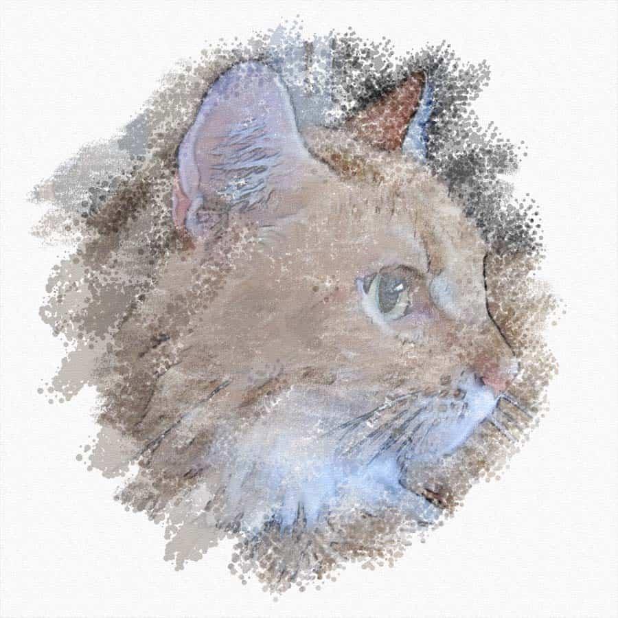 Newton profile art