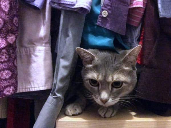 Pierre_in_closet_hanging_clothes_sm