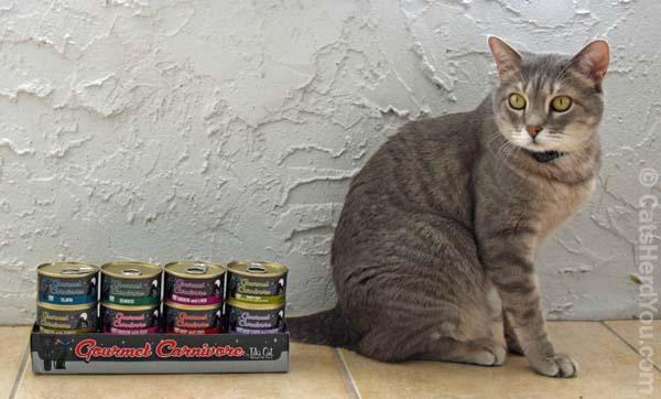 Chewy_tiki_cat_gourmet_carnivore_pierre_wm