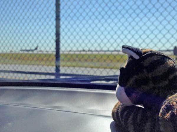 Plush_ashton_watches_airplanes_sm