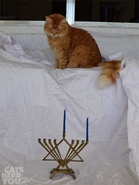 Newton_menorah_01_wm