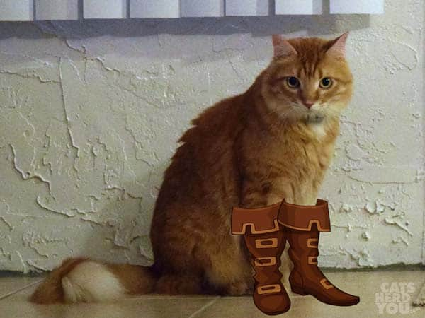 Newton in boots