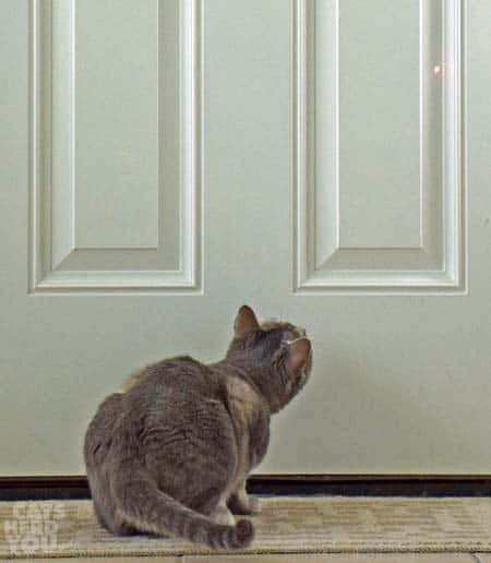Pierre watches the red dot on the door