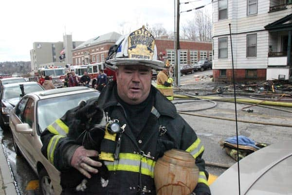Derby firefighter Lou Oliwa saves cat, Angel