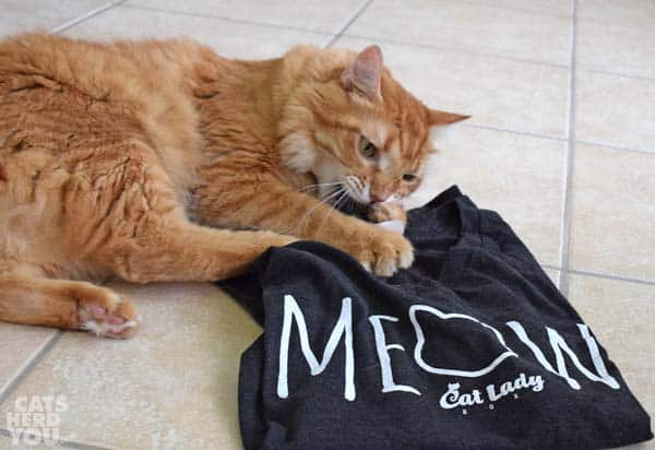 Orange tabby cat attacks CatLady shirt