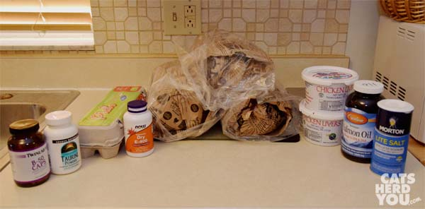 ingredients for raw cat food