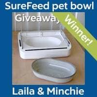 SureFeed Pet Bowl Winner - Laila & Minchie