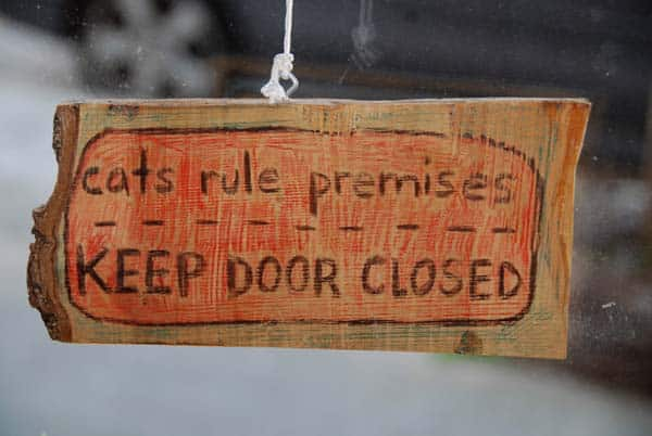 cats rule premises - keep door closed. photo credits: flickr creative commons/ari