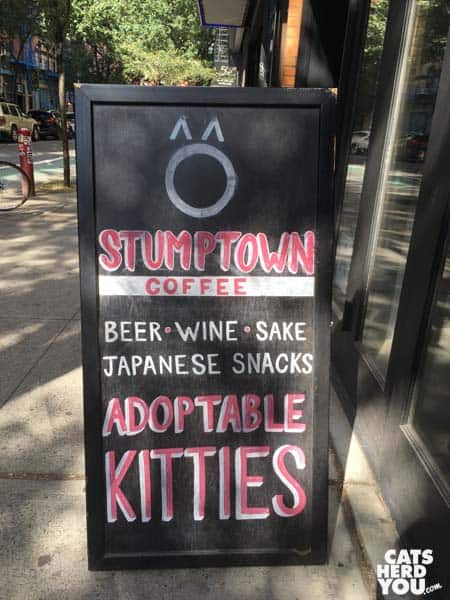 Koneko Cat Cafe, NYC Sign