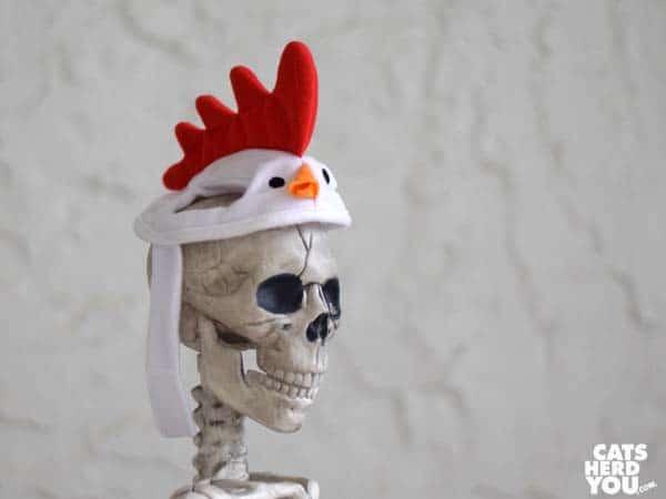 skeleton wearing chicken hat