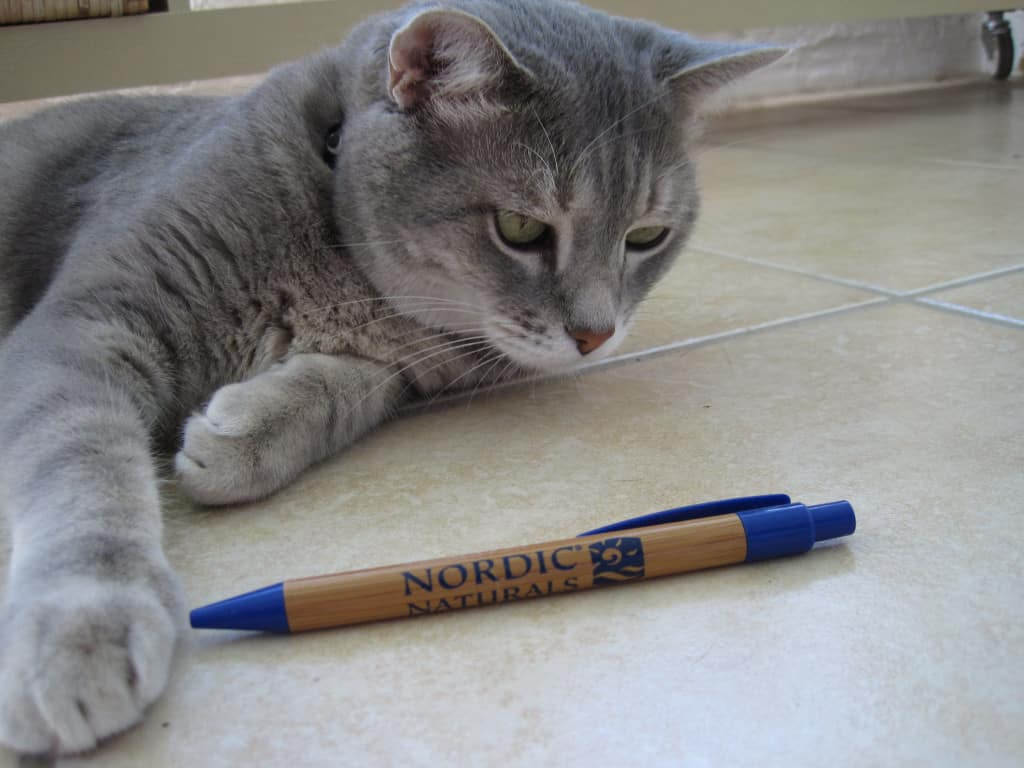 NN06-Pierre and Pen
