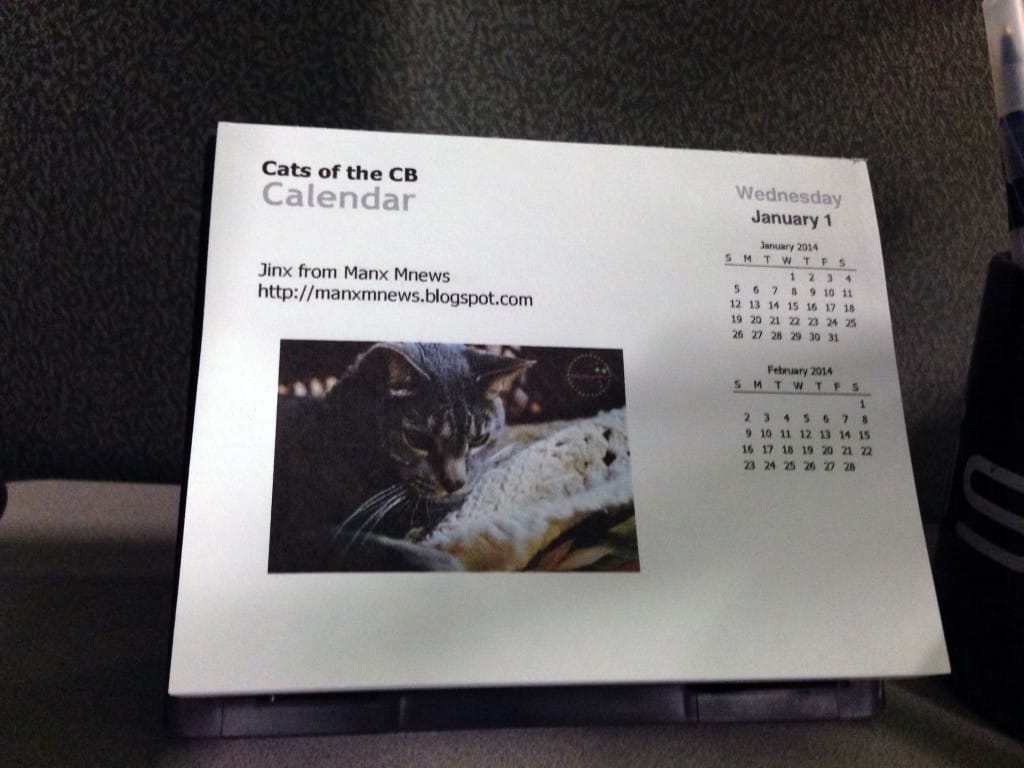 Cats of the CB Calendar Mr Jinx