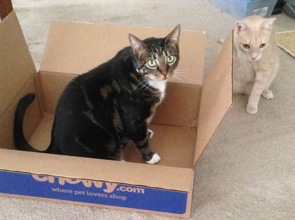 Cousin_Shep_and_Earl_in_box