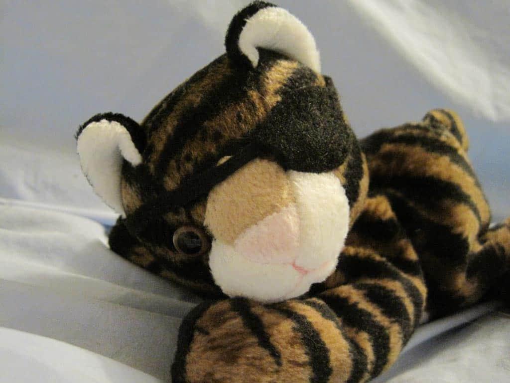 plush cat with eyepatch