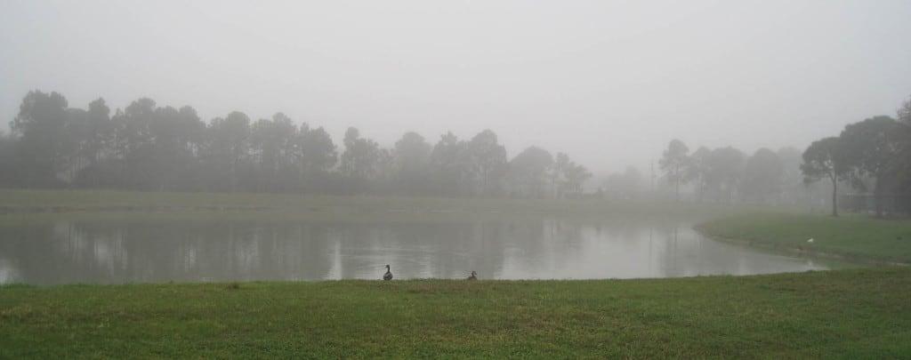 Fog_panorama_sm