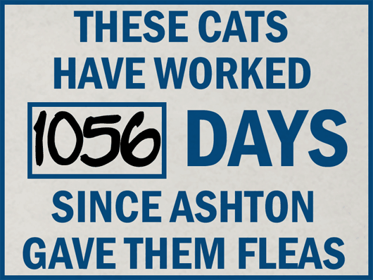 Safety Sign - Days Since Ashton Gave Us Fleas