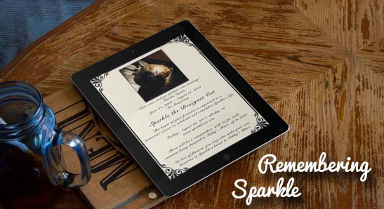 sparkle_memorial_invite_on_ipad_02