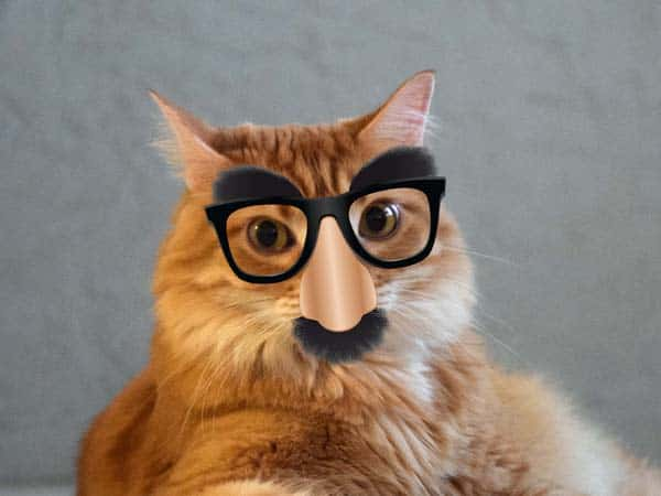 Newton wearing Groucho Marx glasses