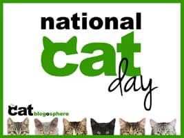 national_cat_day_xs