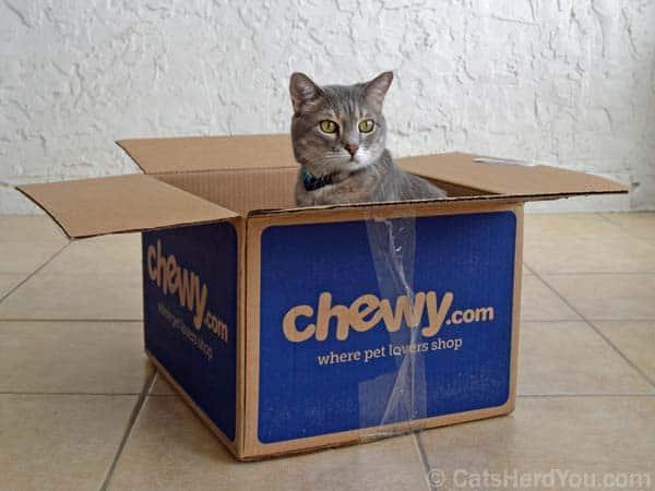 Chewy_box_07_wm