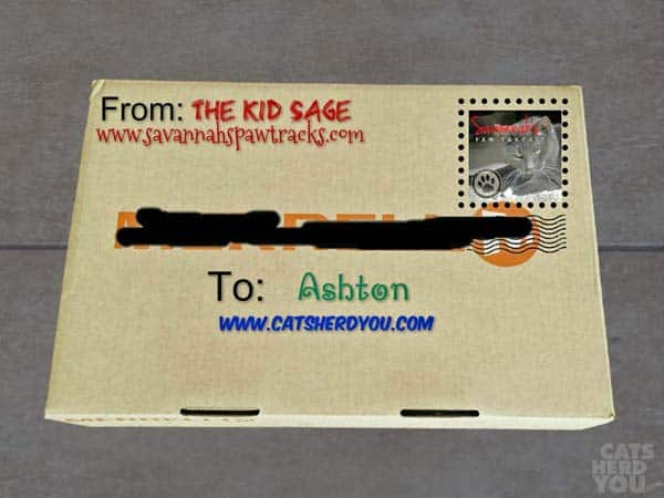 Box addressed to Ashton