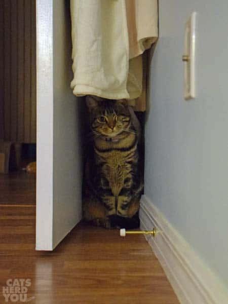 Ashton behind the door