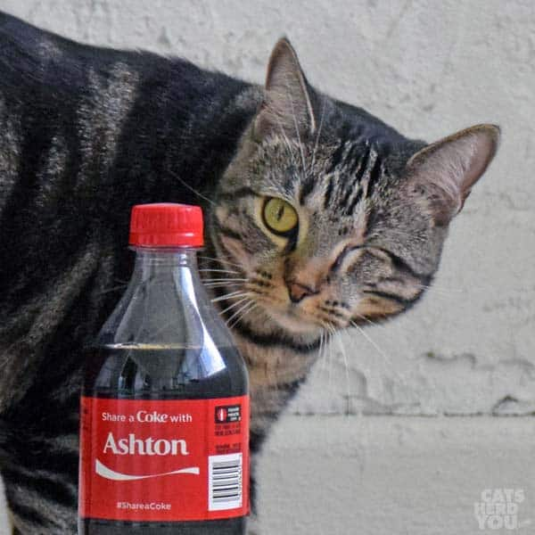 Ashton with personalized Coke bottle