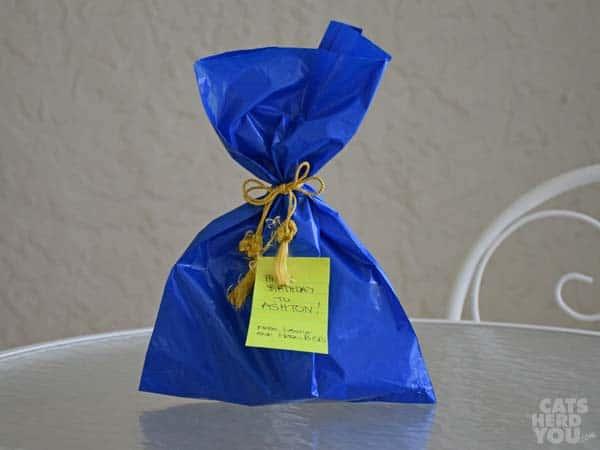 Gift for Ashton