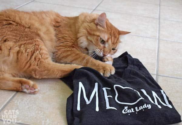 Orange tabby cat attacks CatLady shirt