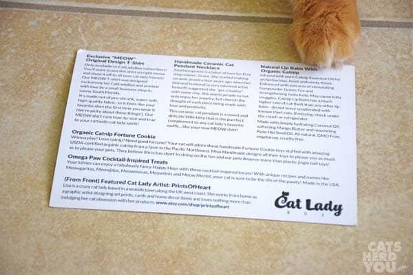 CatLadyBox card