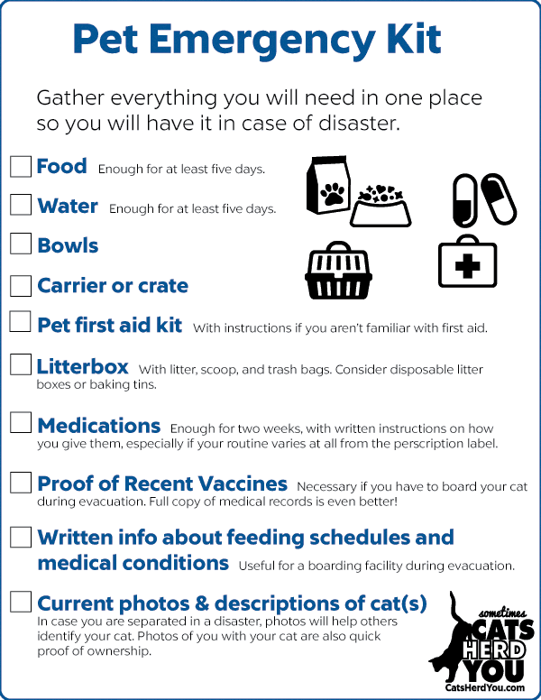 pet emergency kit contents list