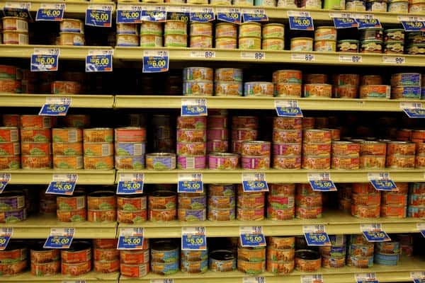 canned cat food on shelf