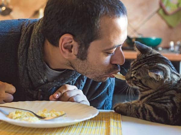 man shares lunch with cat