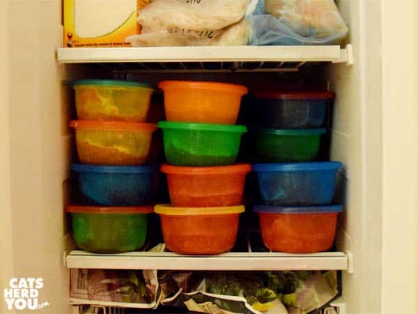 raw cat food in freezer in portion sized containers