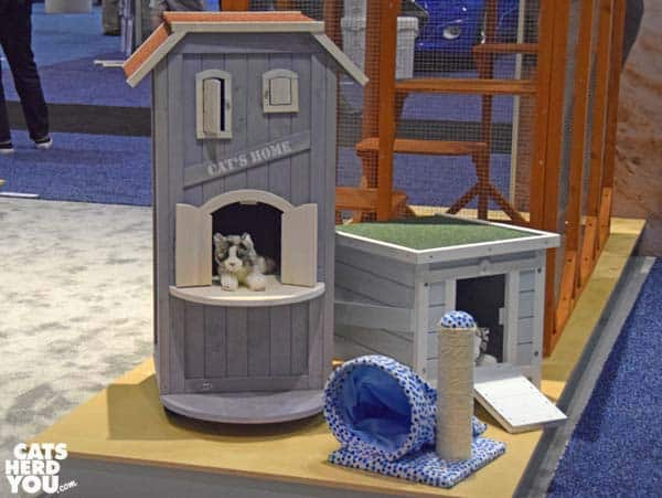 outdoor cat shelters at Global Pet Expo 2016 #globalpetexpo