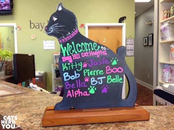 cat welcome sign at cat hospital
