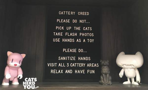 Rules sign, Koneko cat cafe NYC