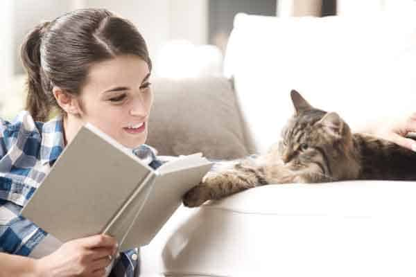 Woman with book and cat. Photo credit: depoitphotos/stokkete