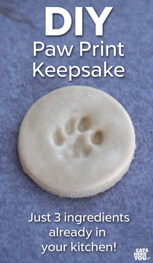DIY Paw Print Keepsake - Use salt dough to make a paw print keepsake using things you probably already have in your kitchen! #diy
