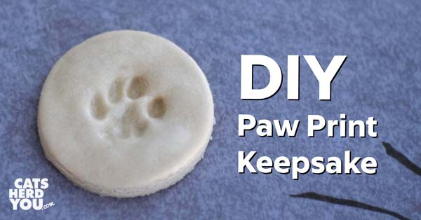 DIY Paw Print Keepsake