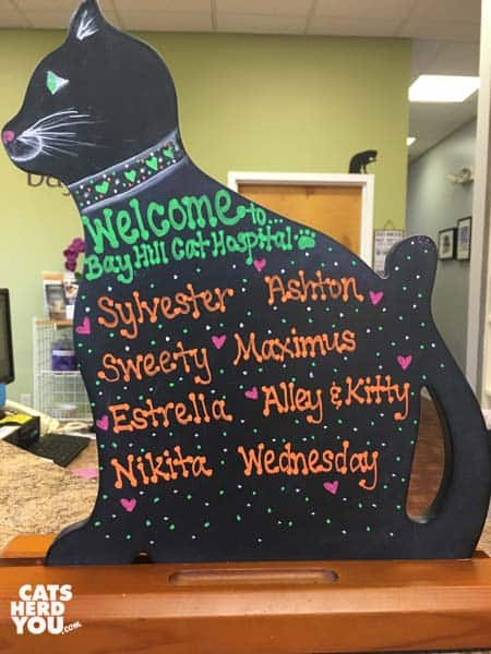 Welcome sign at Bay Hill Cat Hospital for Ashton