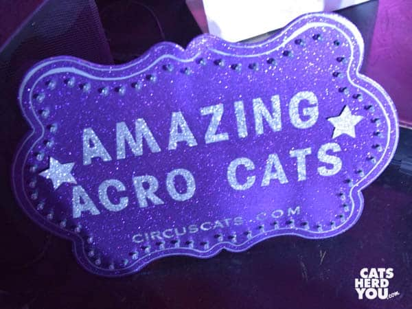 Amazing Acro-Cats Sign