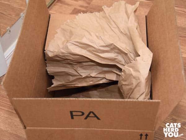 crumpled paper in cardboard box