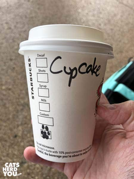 Cupcake Starbucks cup with paw instead of X