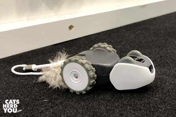 mousr robotic mouse